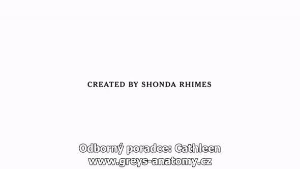Greys Anatomy S14E04 CZ Titulky avi