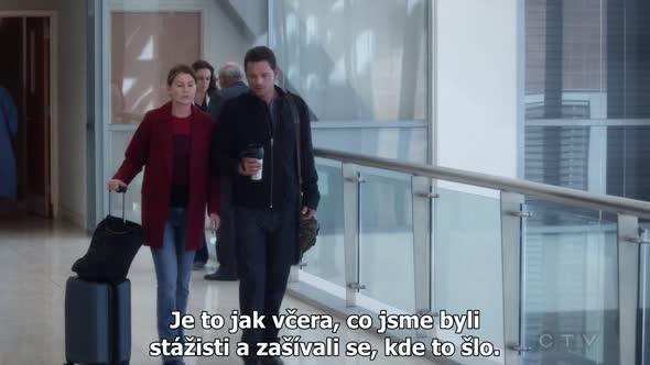 Greys Anatomy S14E07 CZ Titulky avi