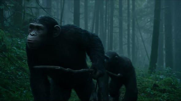 Úsvit planety opic 2014 cz avi