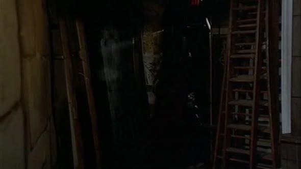 Columbo 02x04   S dýkou v mysli mkv