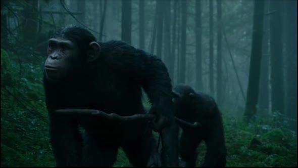 Usvit planety opic CZ avi