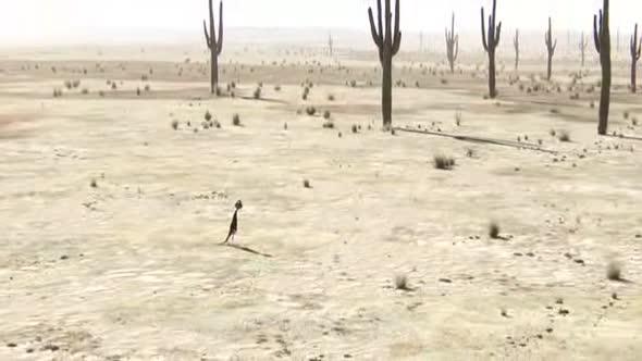 Rango animovaný Western Komedie CZ dabing+ avi