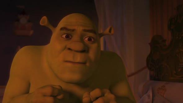 Shrek  3 cz avi